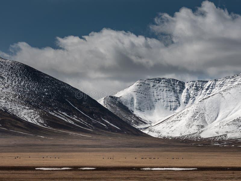 Vista do fundo de Tibet imagens de stock royalty free