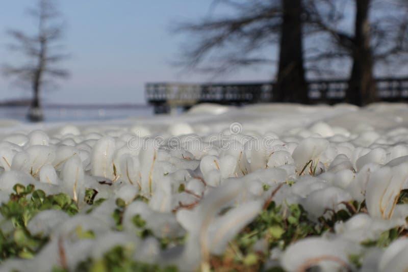 Vista do gelo fotografia de stock