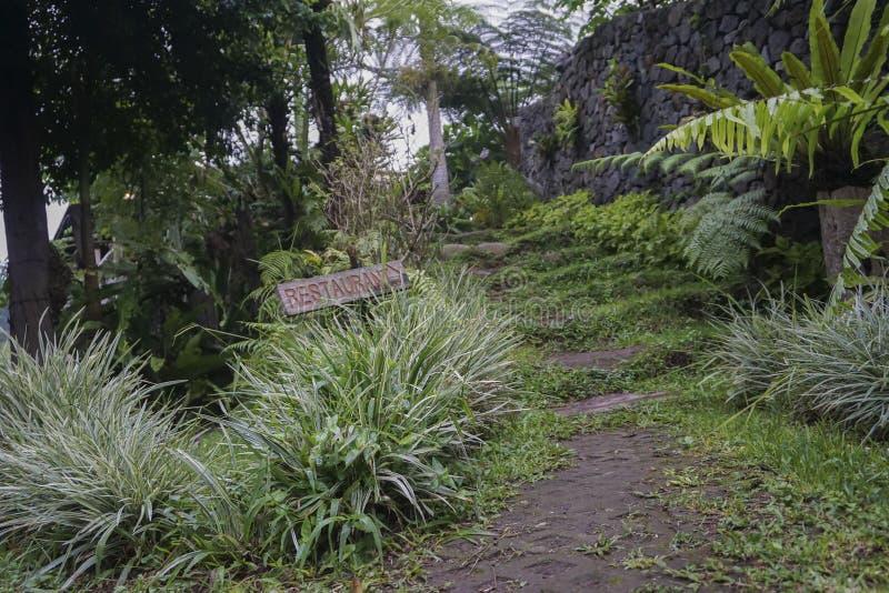 Vista do jardim verde em Bali foto de stock