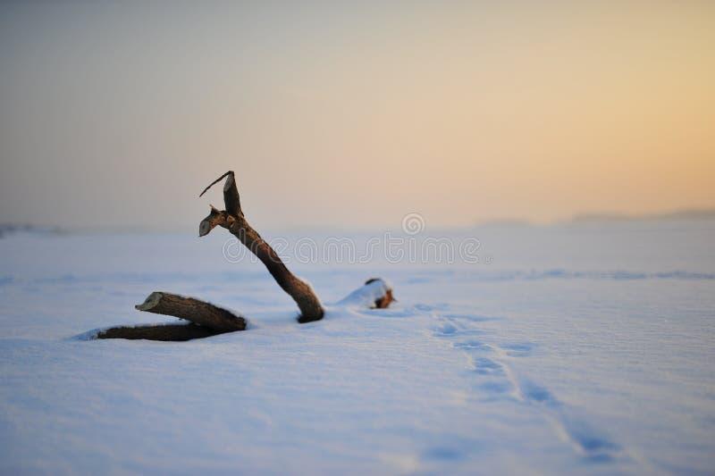 Vista do lago congelado coberto pela neve com a parte de madeira fotografia de stock royalty free