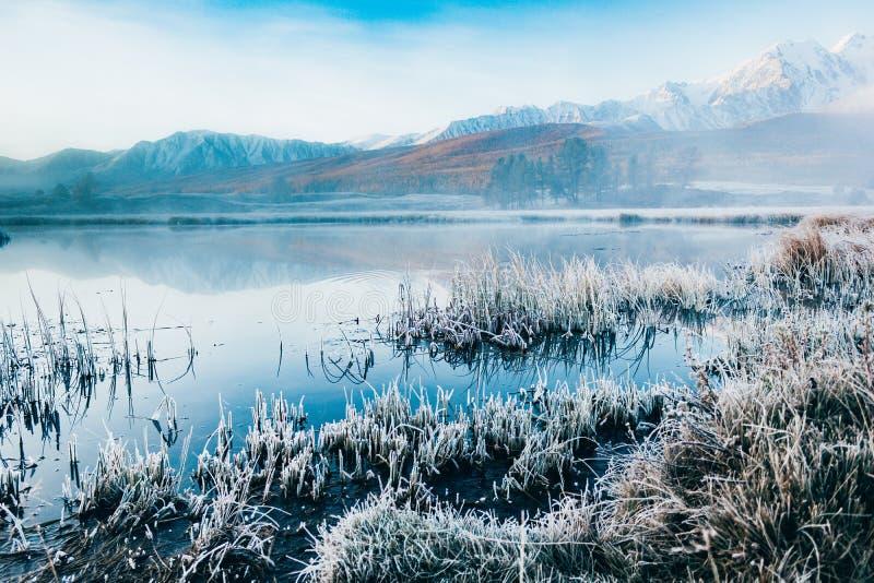 Vista do lago da montanha nevoento imagem de stock