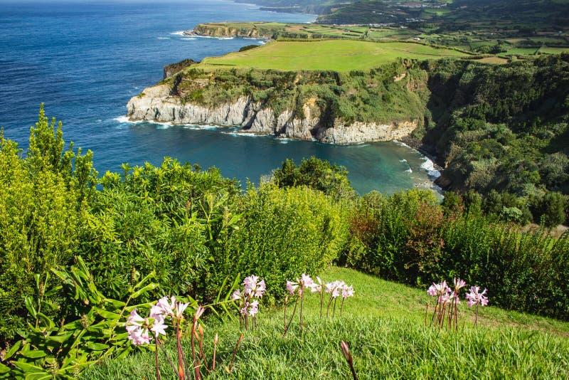Vista do litoral do ponto de vista de Santa Iria sobre a ilha de São Miguel, Açores, Portugal imagens de stock