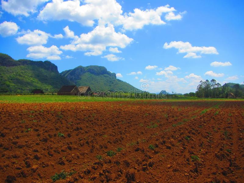 Vista do local da herança do UNESCO de Cuba do vale dos vinales foto de stock royalty free