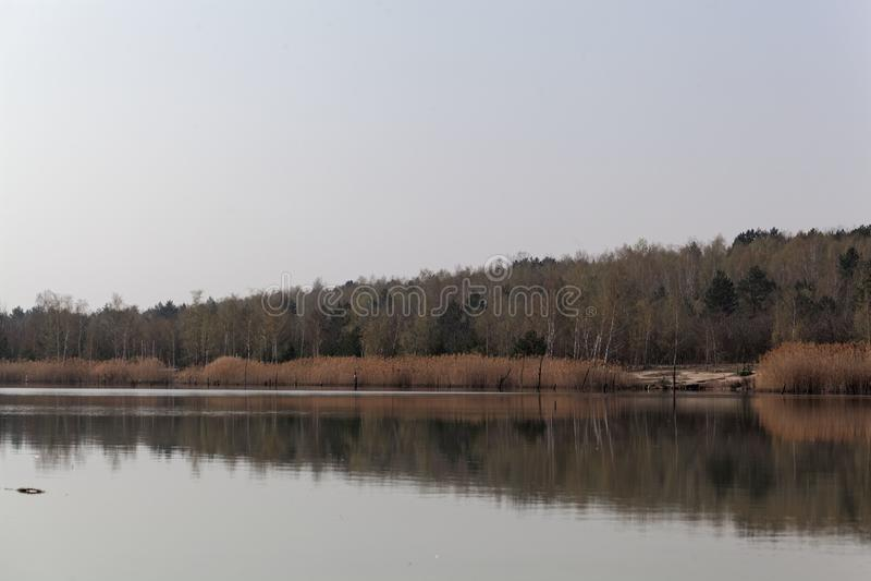 Vista do Ludwigsee em Saxony Anhalt/Alemanha imagem de stock