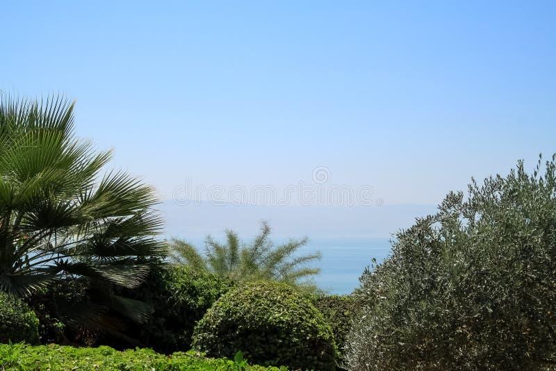 Vista do mar de Galilee e de montanhas através dos arbustos bonitos do jardim na montagem das beatitudes fotografia de stock royalty free