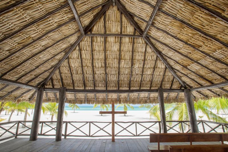 Vista do miradouro tropical na praia com palmeiras imagem de stock