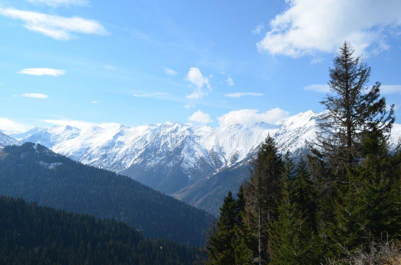 Vista do montanhas nevado no peru da região do Mar Negro imagens de stock