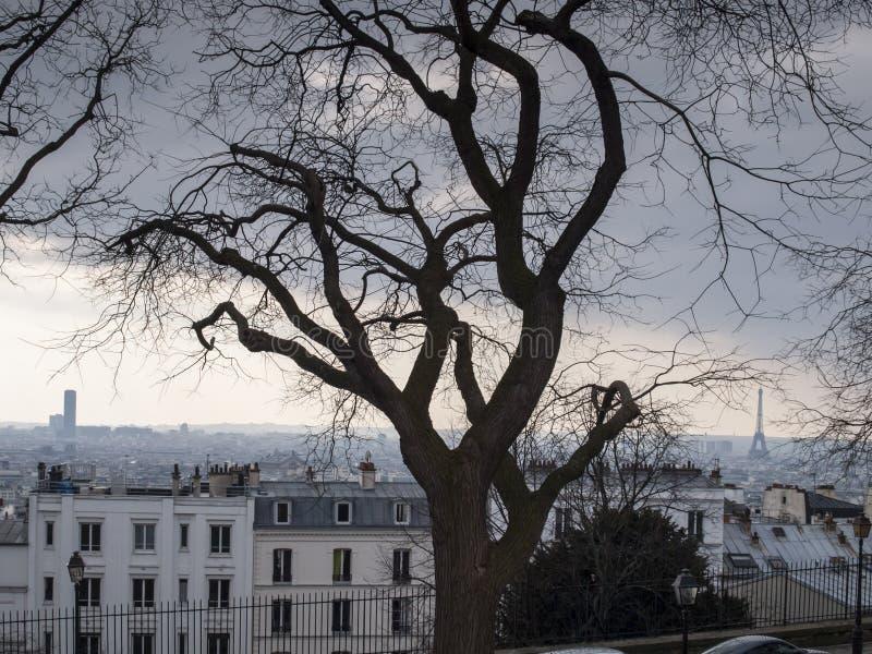 Vista do monte de Montmartre para a torre Eiffel em um dia nebuloso frio fotos de stock