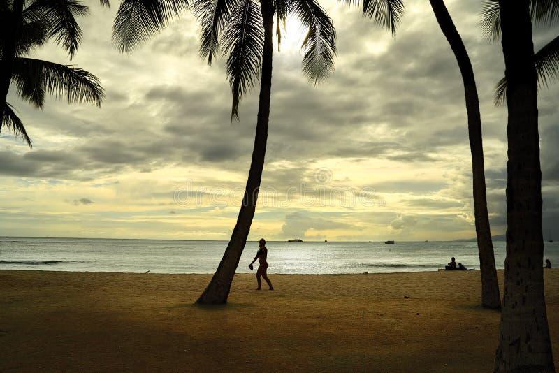Vista do oceano e do céu do por do sol na praia no Estados Unidos de Havaí, em agosto de 2012 com o homem e as palmeiras mostrado imagens de stock