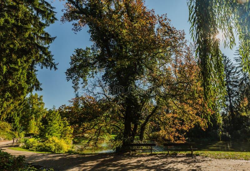 Vista do parque público em Pruhonice, República Checa fotos de stock