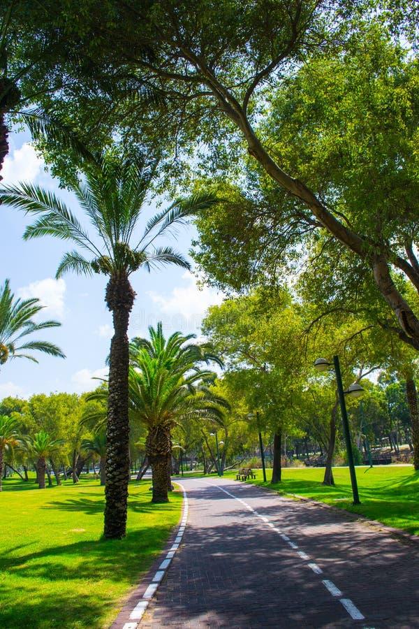 Vista do parque Yarkon do verão imagens de stock royalty free