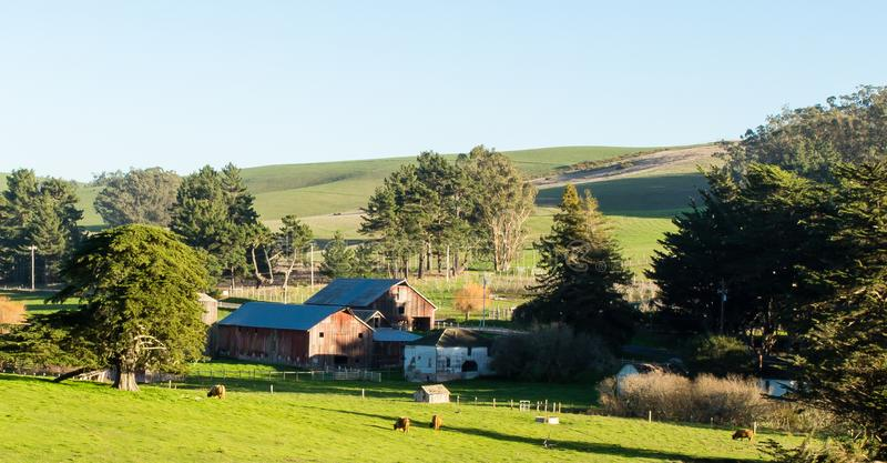 Vista do rancho em Tomales Califórnia em um dia de inverno ensolarado fotografia de stock royalty free