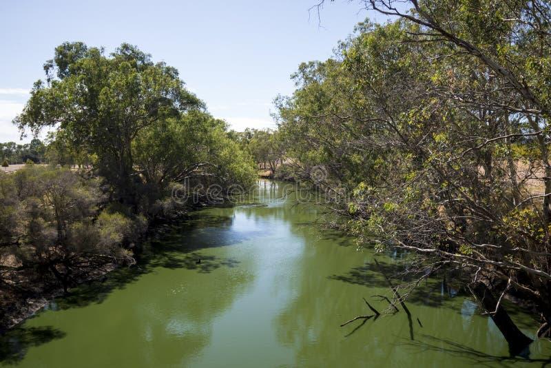 Vista do rio da cisne do pedestre de Maali e da ponte dos ciclistas dentro imagem de stock royalty free