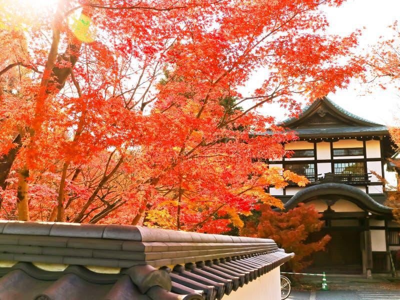 Vista do templo japonês no outono em Kyoto, Japão fotos de stock royalty free