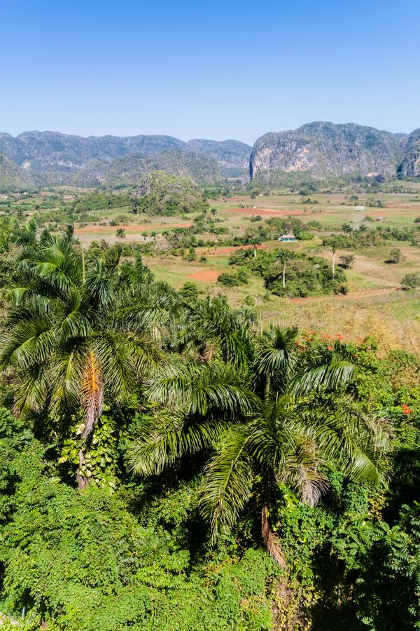 Vista do vale de Vinales, Cub foto de stock royalty free