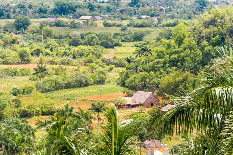 Vista do vale de Vinales, Pinar del Rio, Cuba Copie o espaço para o texto fotografia de stock royalty free