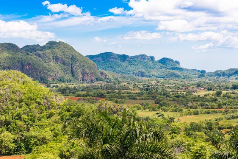 Vista do vale de Vinales, Pinar del Rio, Cuba Copie o espaço para o texto imagens de stock royalty free
