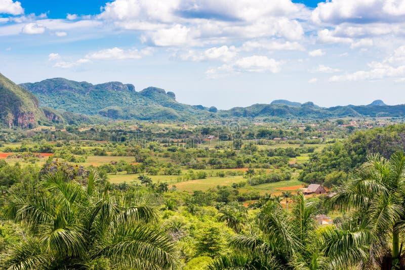 Vista do vale de Vinales, Pinar del Rio, Cuba Copie o espaço para o texto foto de stock royalty free