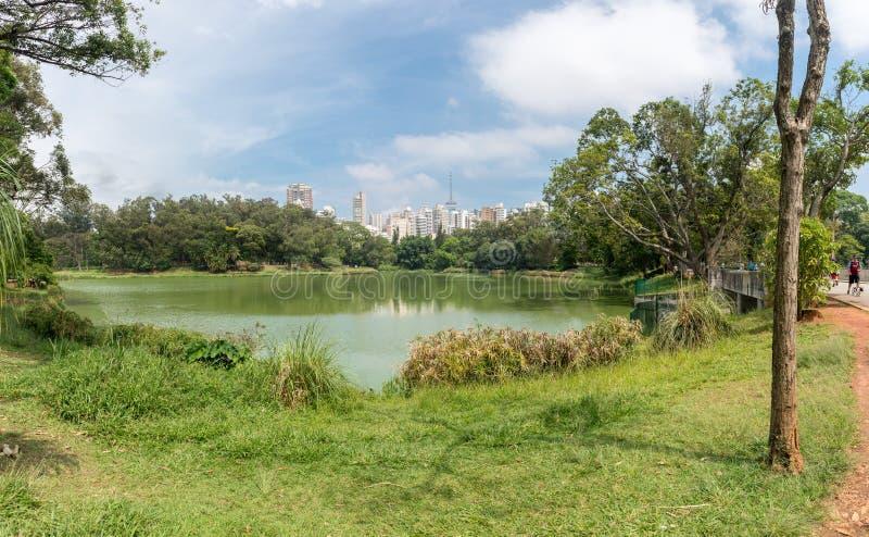 Vista dos arranha-céus da cidade do parque de Aclimacao fotos de stock royalty free