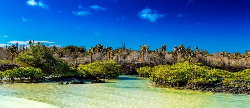 Vista dos Galápagos imagens de stock