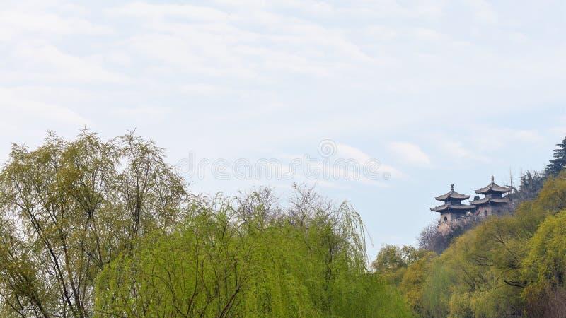 vista dos templos no jardim verde foto de stock royalty free
