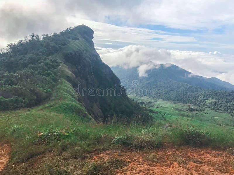 Vista e grama verde sobre a montanha no MAI de Chaing, Tailândia do jong de segunda-feira foto de stock royalty free