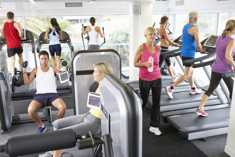 Vista elevado do Gym ocupado com os povos que exercitam em máquinas imagens de stock
