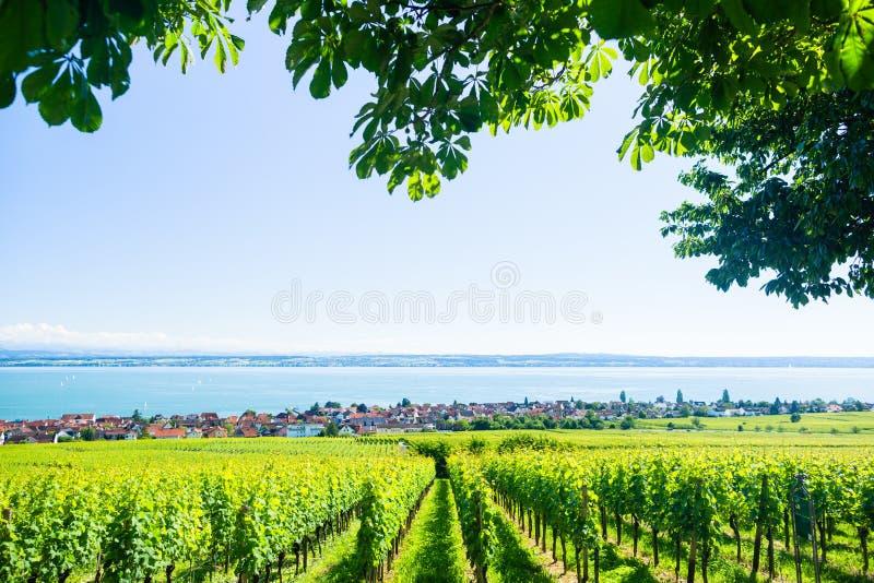 Vista em Bodensee com cordilheira do cume no fundo imagens de stock