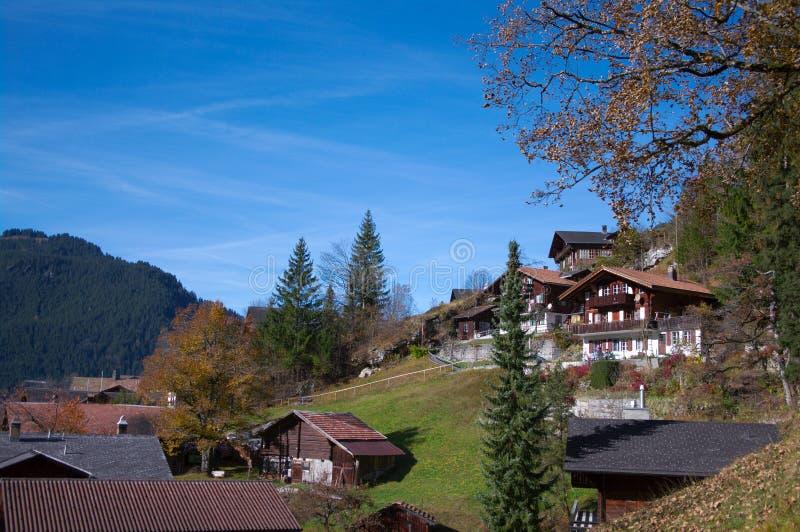 Download Vista em Grindelwald imagem de stock. Imagem de daylight - 16851949