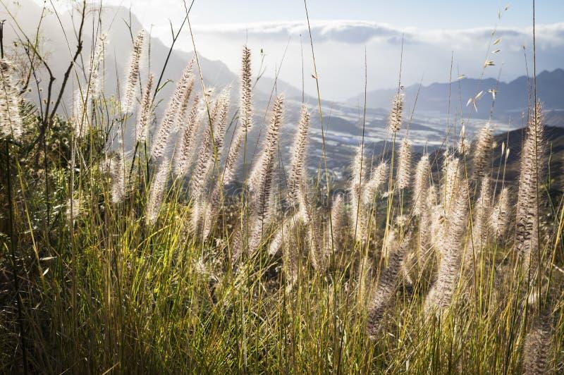 Vista em montanhas da ilha de Gran Canaria, Espanha imagem de stock royalty free