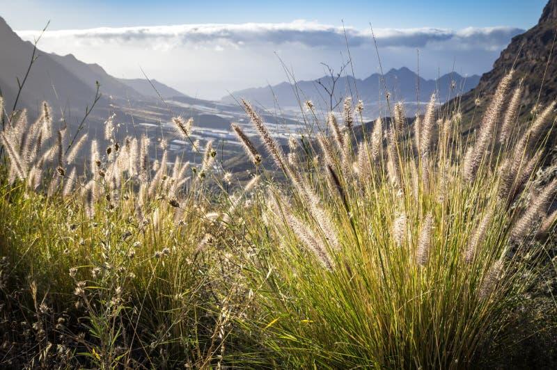 Vista em montanhas da ilha de Gran Canaria, Espanha fotografia de stock