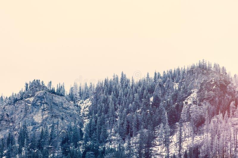 Vista em montanhas Tatry do inverno imagens de stock