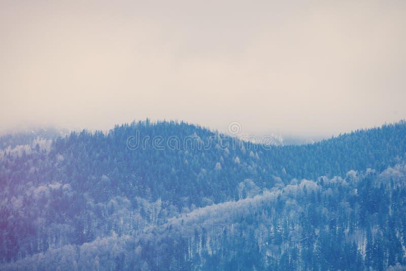 Vista em montanhas Tatry do inverno, Polônia imagens de stock