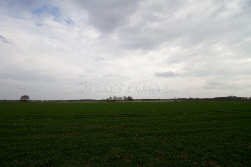 Vista em nuvens acima de uma área da grama no emsland Alemanha do rhede fotos de stock