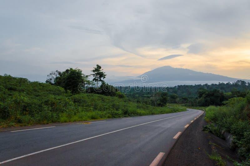 Vista escénica de la montaña del Camerún del soporte con el bosque verde durante puesta del sol, el Camerún, África fotos de archivo