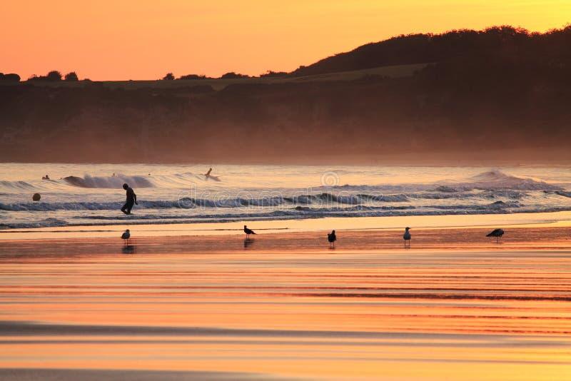 Vista escénica de la silueta de la gente que practica surf en la playa y las gaviotas en cielo colorido del verano de la salida d foto de archivo