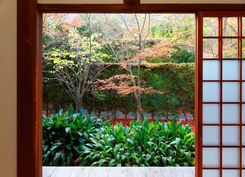 Vista escénica de los árboles de arce coloridos en el patio detrás del shoji de desplazamiento de las puertas de malla de un cuar fotos de archivo