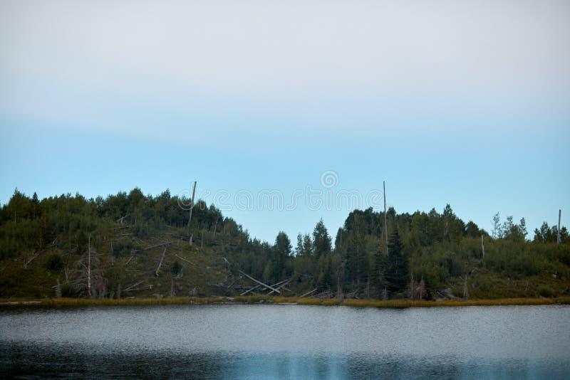 Vista escénica de un lago boscoso en un día cubierto imagenes de archivo