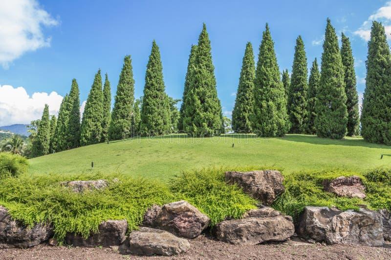 Vista escénica de un rastro en parque real en Chiangmai Tailandia foto de archivo