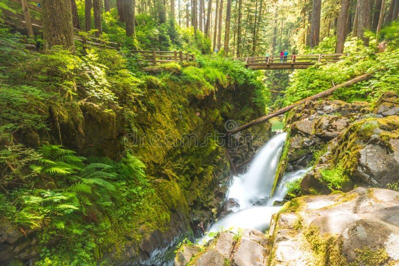 Vista escénica del área de las caídas del agua del duc del solenoide en el parque nacional olímpico del mt, Washington, los E.E.U imagen de archivo