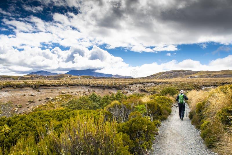 Vista escénica del parque nacional de Tongariro en Nueva Zelanda imagenes de archivo
