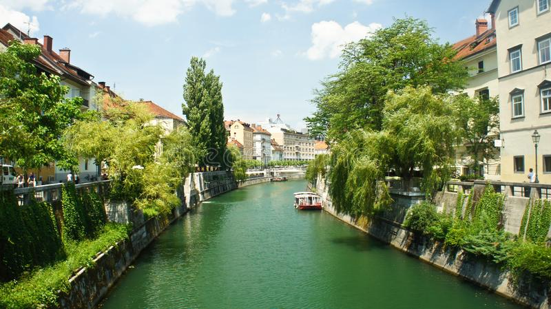 Vista escénica del río de Ljubljanica en ciudad vieja, paisaje urbano con árboles verdes, arquitectura hermosa, día soleado,  fotografía de archivo