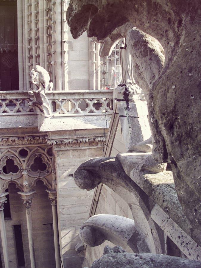 Vista esterna Notre Dame de Paris immagini stock libere da diritti