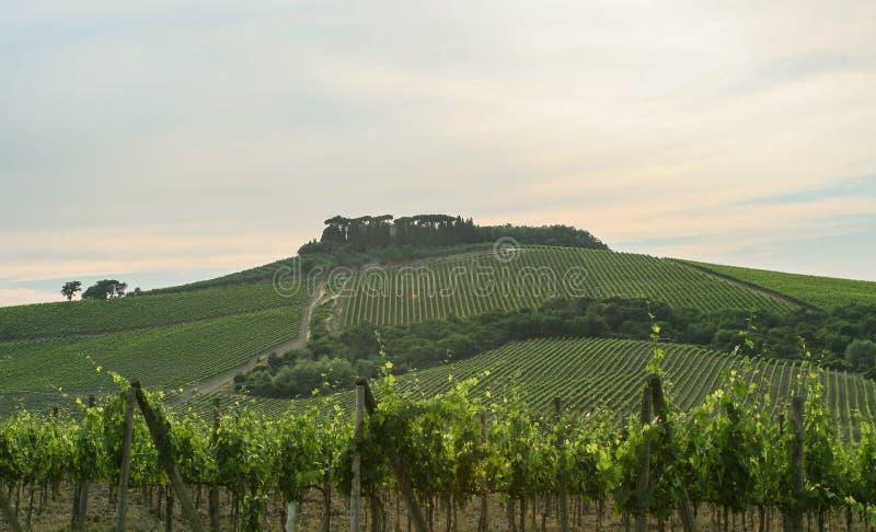 Vista fantastica di una proprietà terriera dell'Italia dalla via immagine stock