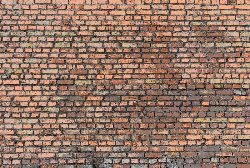 Vista frontale del vecchio muro di mattoni immagini stock libere da diritti