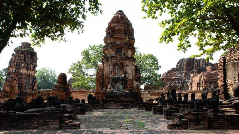 Vista frontale di una pagoda rovinata delle rovine del tempio di Ayutthaya con le foglie degli alberi fotografie stock