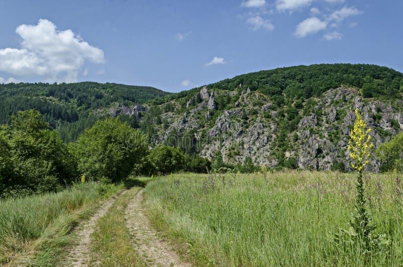 A vista geral com a estrada para grandes e rochas bem formadas assemelha-se a seres humanos, a animais e a outros formulários est imagens de stock
