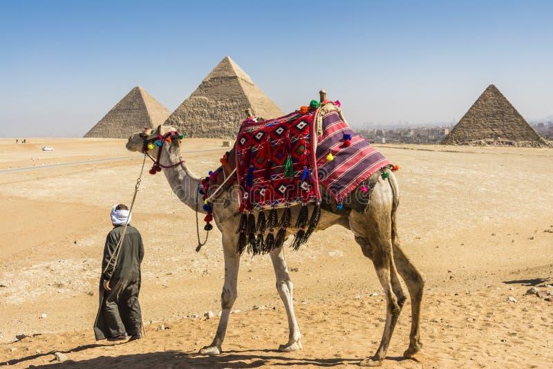 Vista geral das pirâmides de Giza, Egito fotografia de stock royalty free