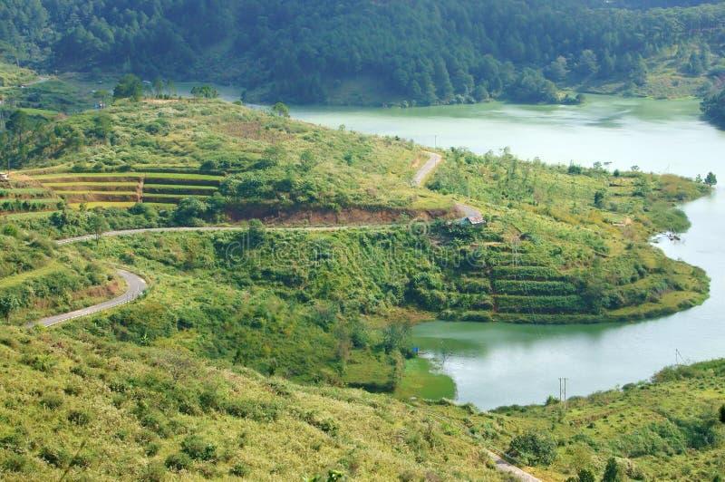 Vista geral do lago Lam de Tuyen da montanha com floresta do pinho, lago a imagem de stock royalty free