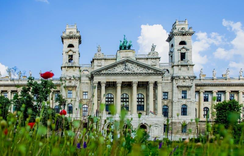 12 06 2019 Vista histórica de Hungria, Budapest A, o parlamento na baixa Arquitetura Uma clareira com papoilas e verdes imagem de stock